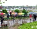雨中漫游牡丹园