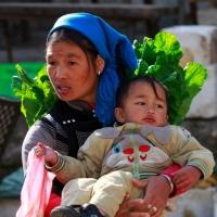 张国强摄影献礼母亲节