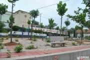 【山东最美乡村】---拍客走进泗水县泉林镇青龙山庄