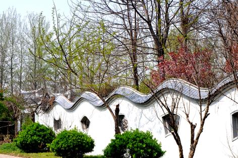 春天的阳光 - 潍坊拍客 - 齐鲁社区 - 山东最大的城市