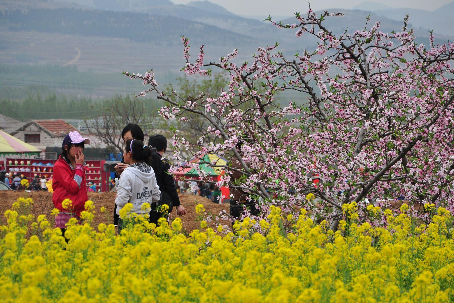 山东肥城风景照片