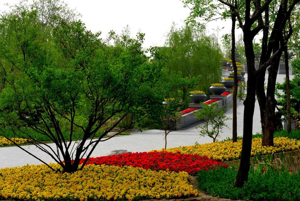 潍坊植物园小景
