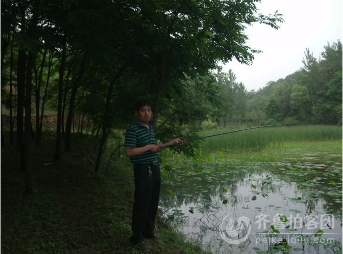 小树林,荷花池,鸟儿鸣,鱼儿游,仿佛人间仙境,抛开一切烦恼,欣赏自然