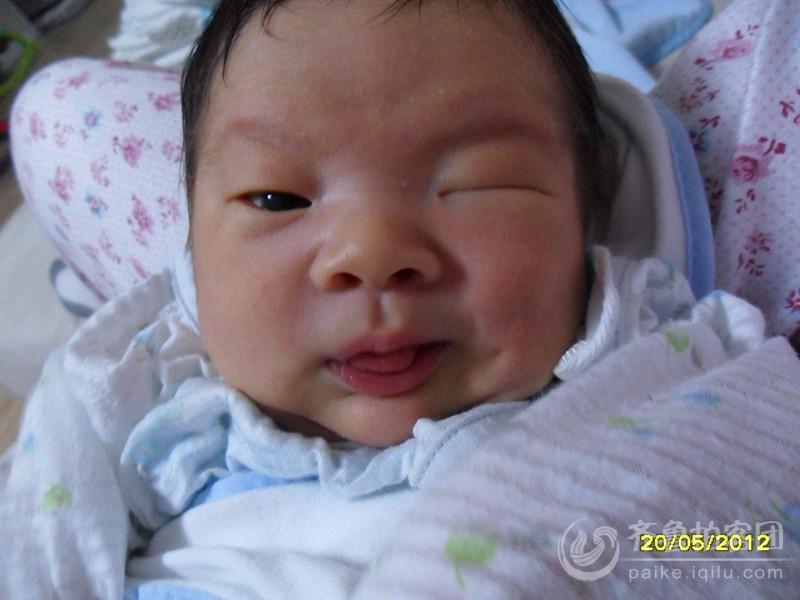 很可爱的婴儿的照片