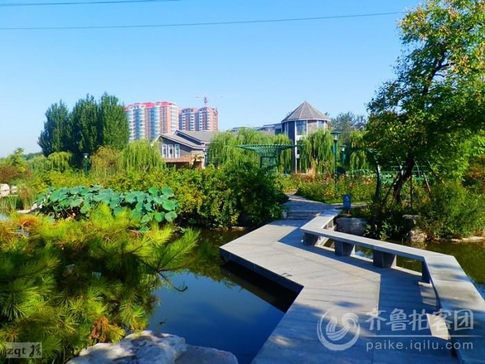 潍坊植物园的晨景