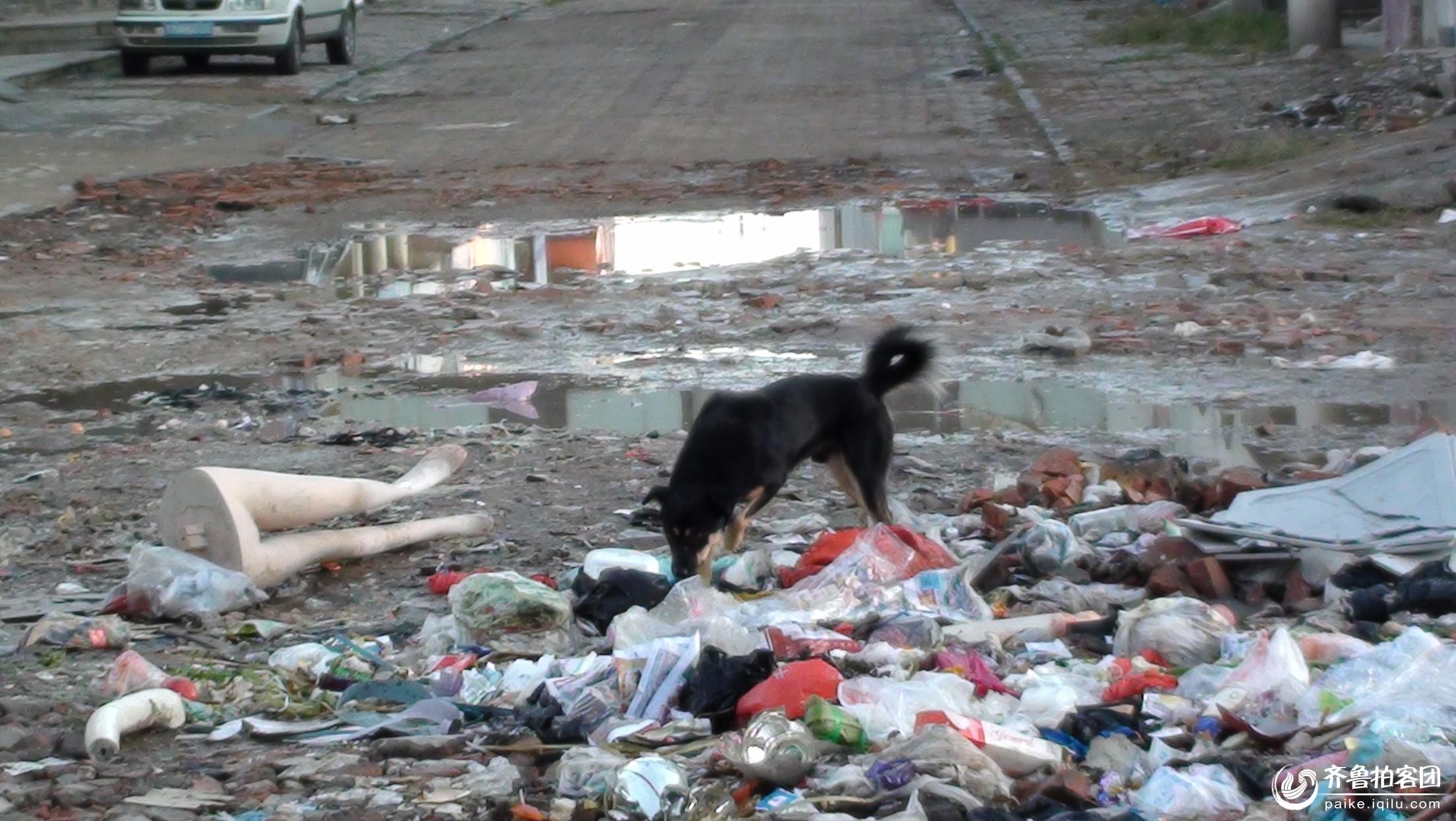 大寺商场内i垃圾成堆 现场留下模特大腿