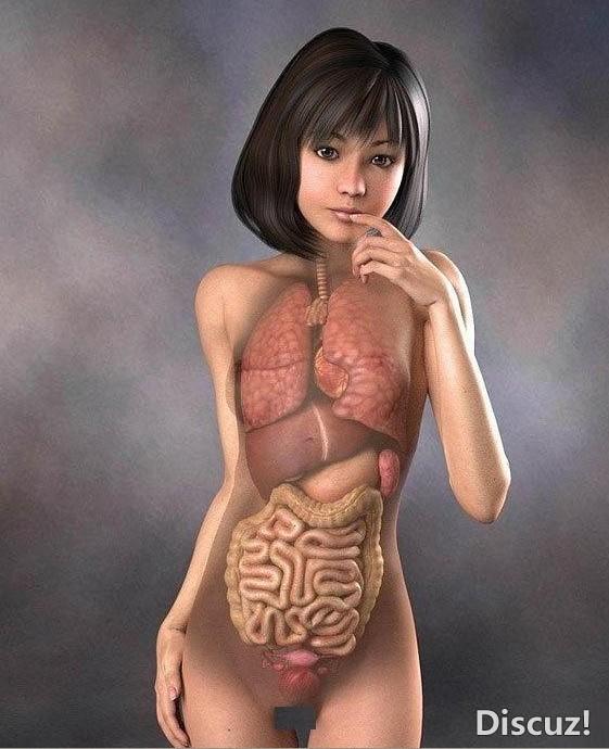 真人3D解剖图 乡村医生 齐鲁