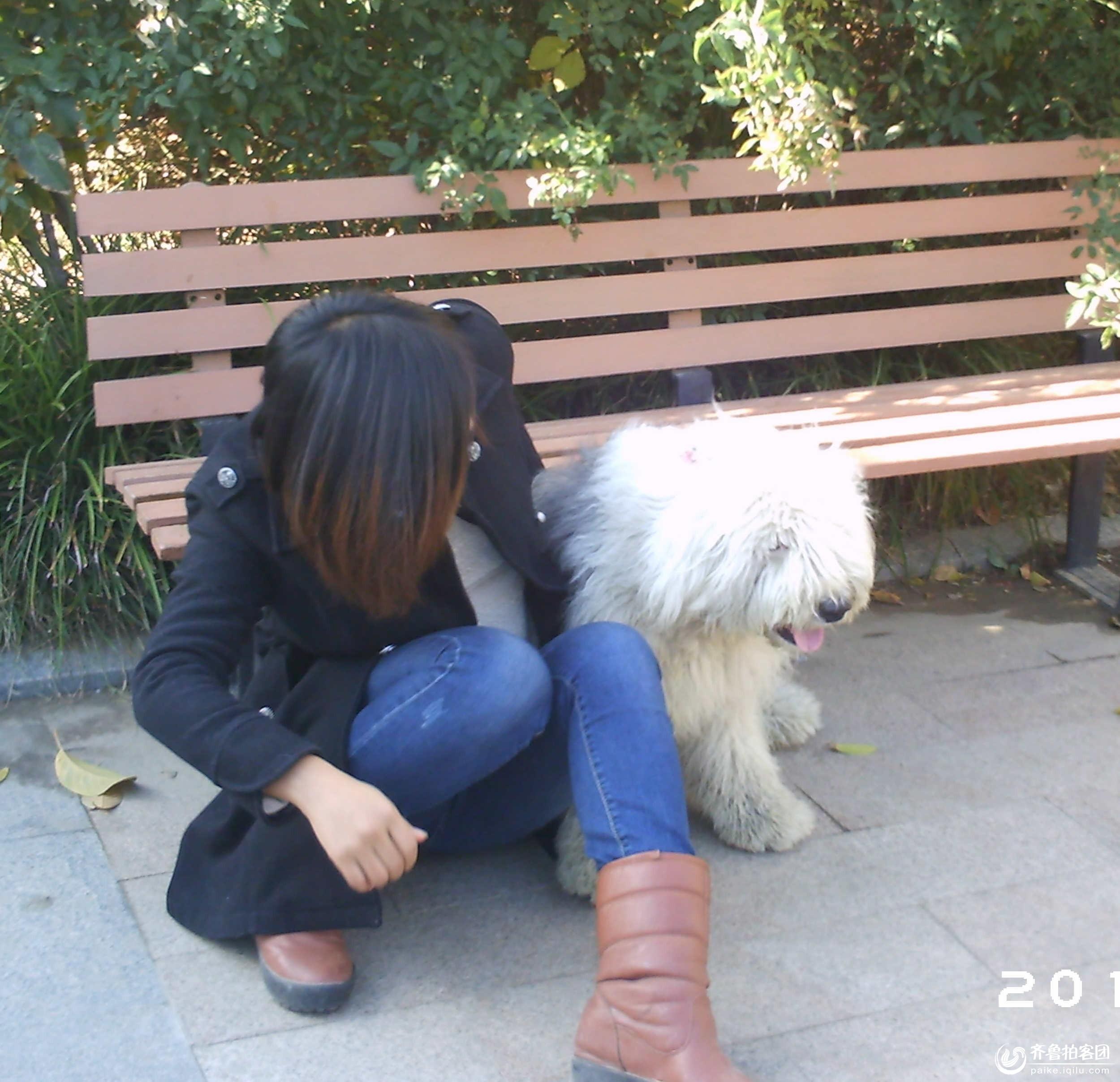 女子与狗交小�_狗狗爱美女