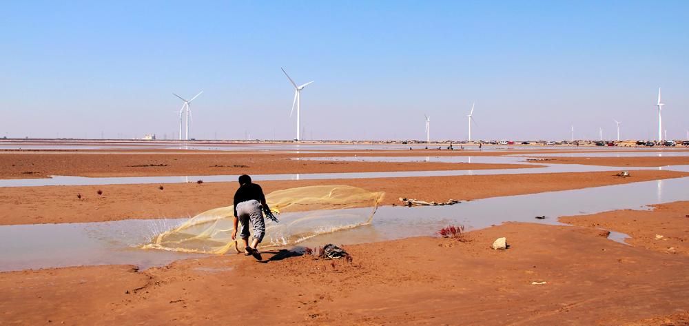 《畅想黄河口》2012-10-1拍摄于黄河口湿地