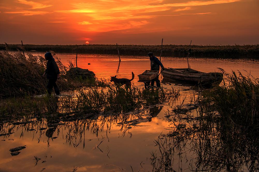 渔夫与狗.jpg