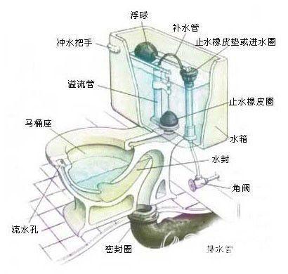 马桶下水不畅通,马桶水箱水位不够高影响冲水效果