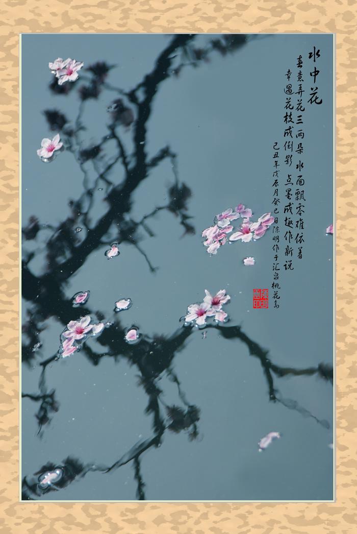 18页:鲁山人家摄:桃花x.jpg