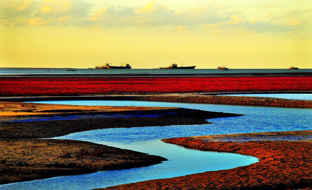 19页:《红海滩》张宝民 摄.jpg