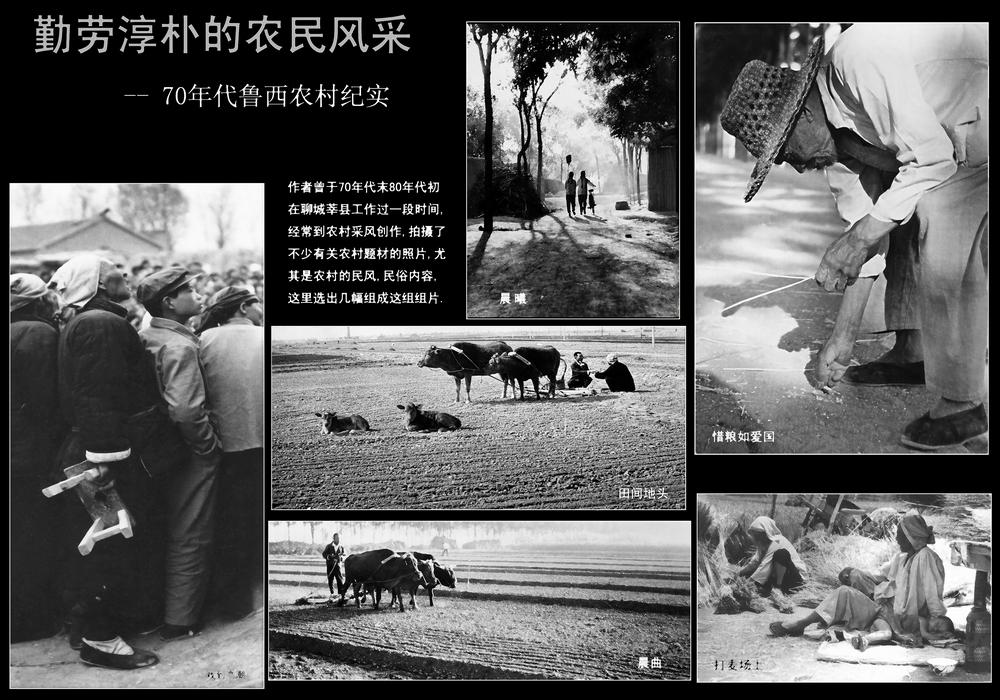 19页:花花牛:勤劳淳朴的农民风采.jpg