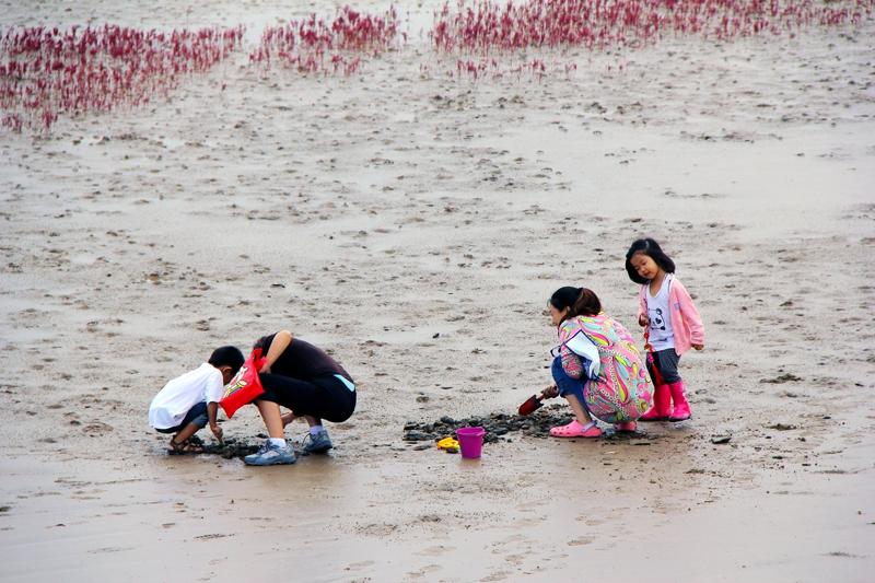 ,赶海丫丫》拍摄于黄河口湿地