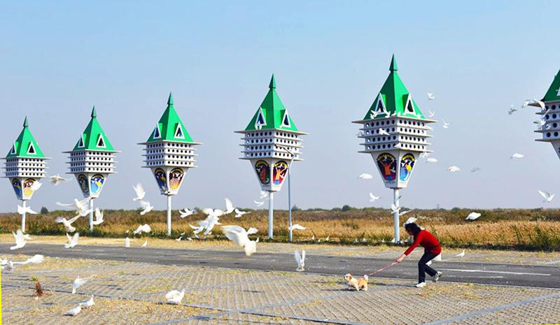 《探望》拍摄于黄河口旅游区