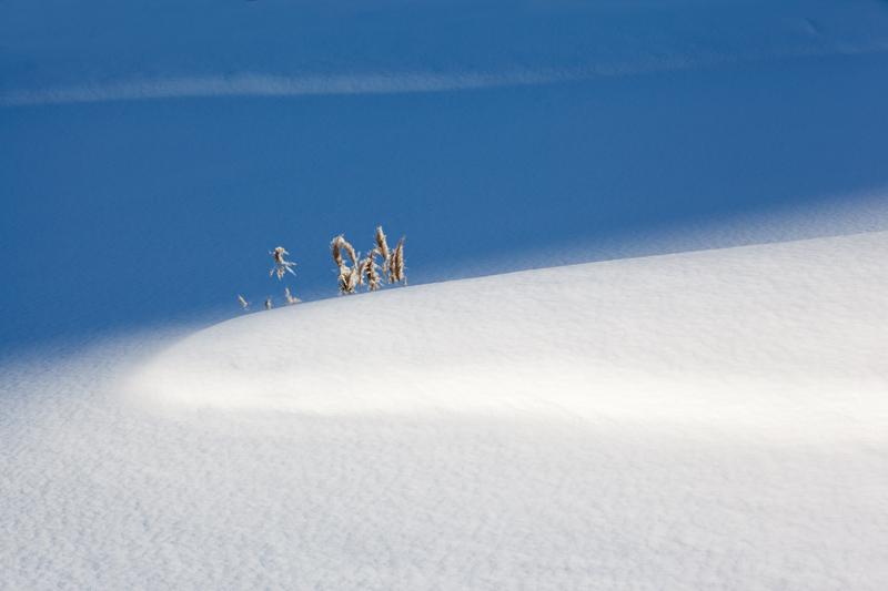《寂静的冬季》.jpg