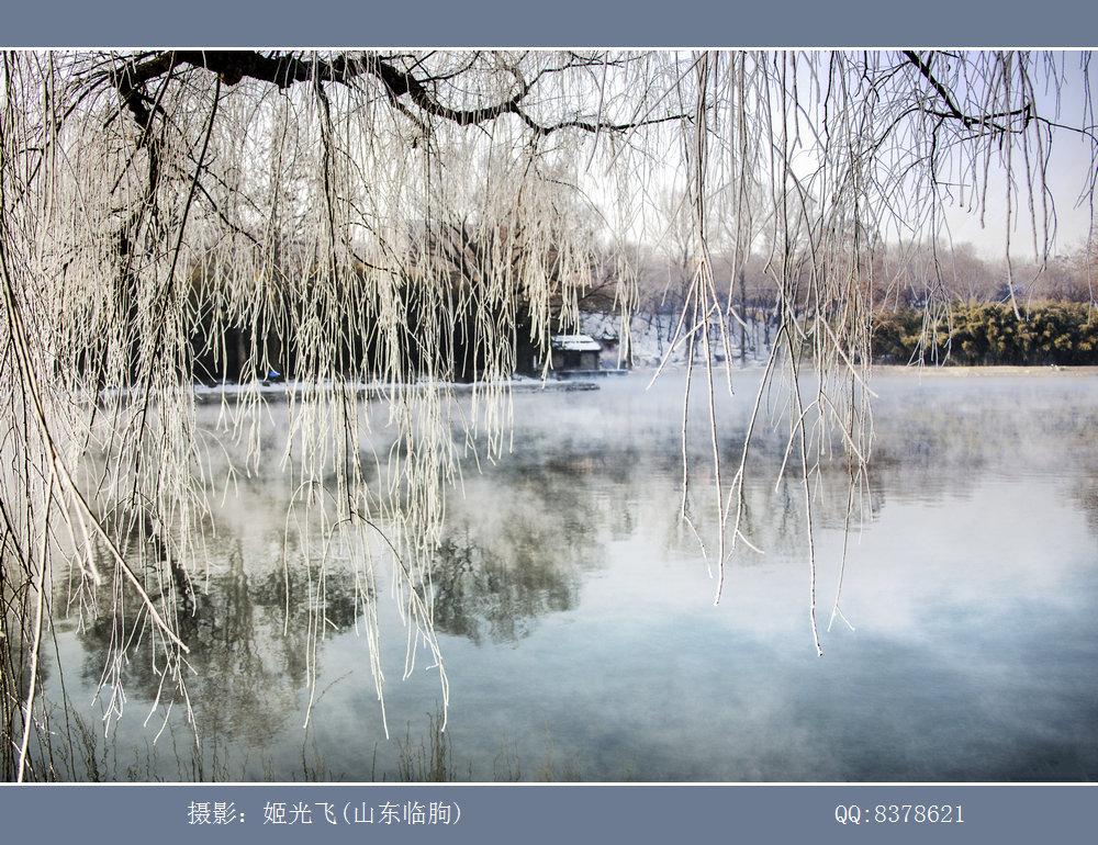 临朐老龙湾(姬光飞摄影) (10).jpg