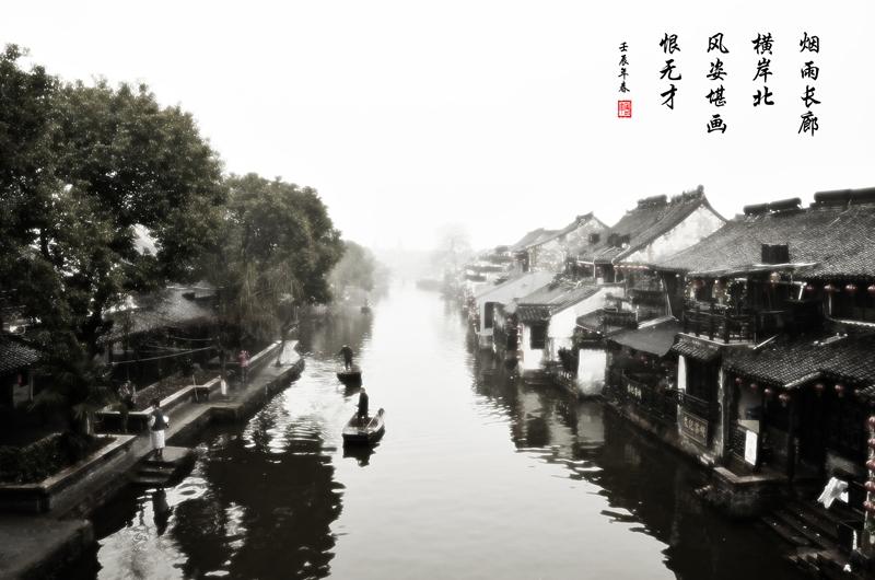 8杨海网名泉城老羊-水墨西塘.jpg