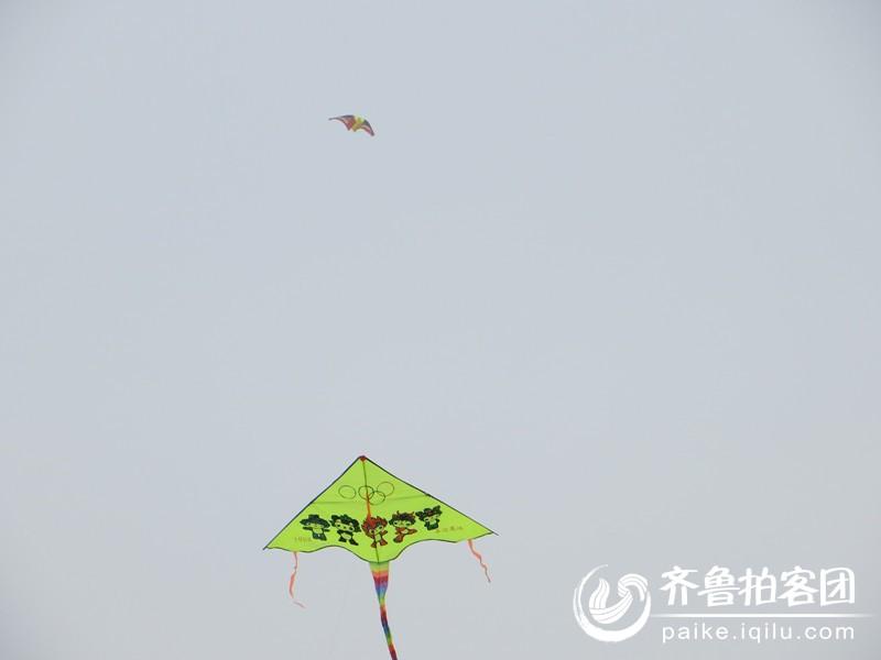 春天来了,放风筝