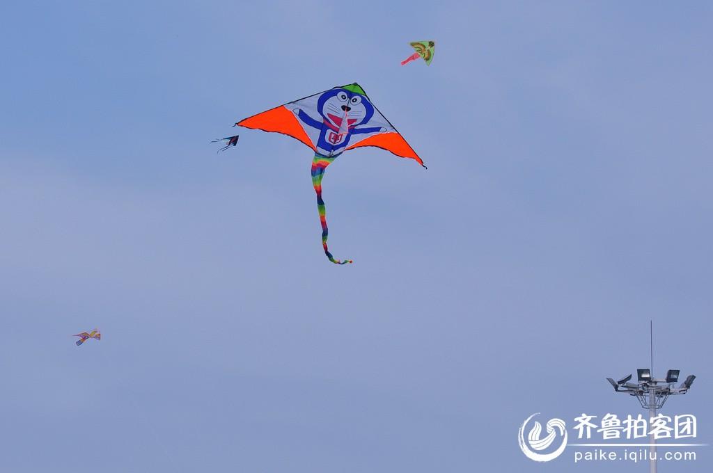 春天来了放风筝 - 菏泽拍客