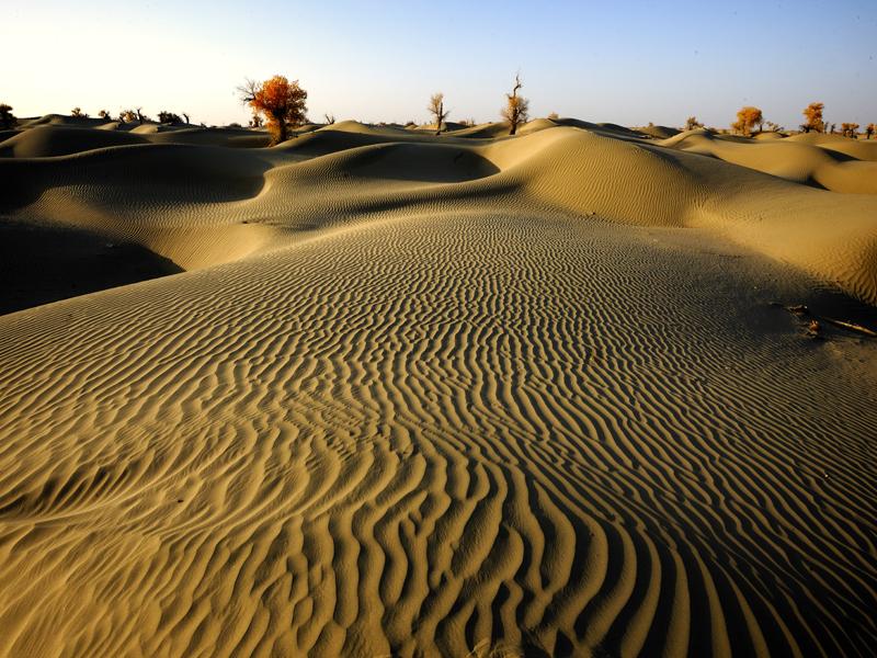 塔克拉玛干沙漠腹地