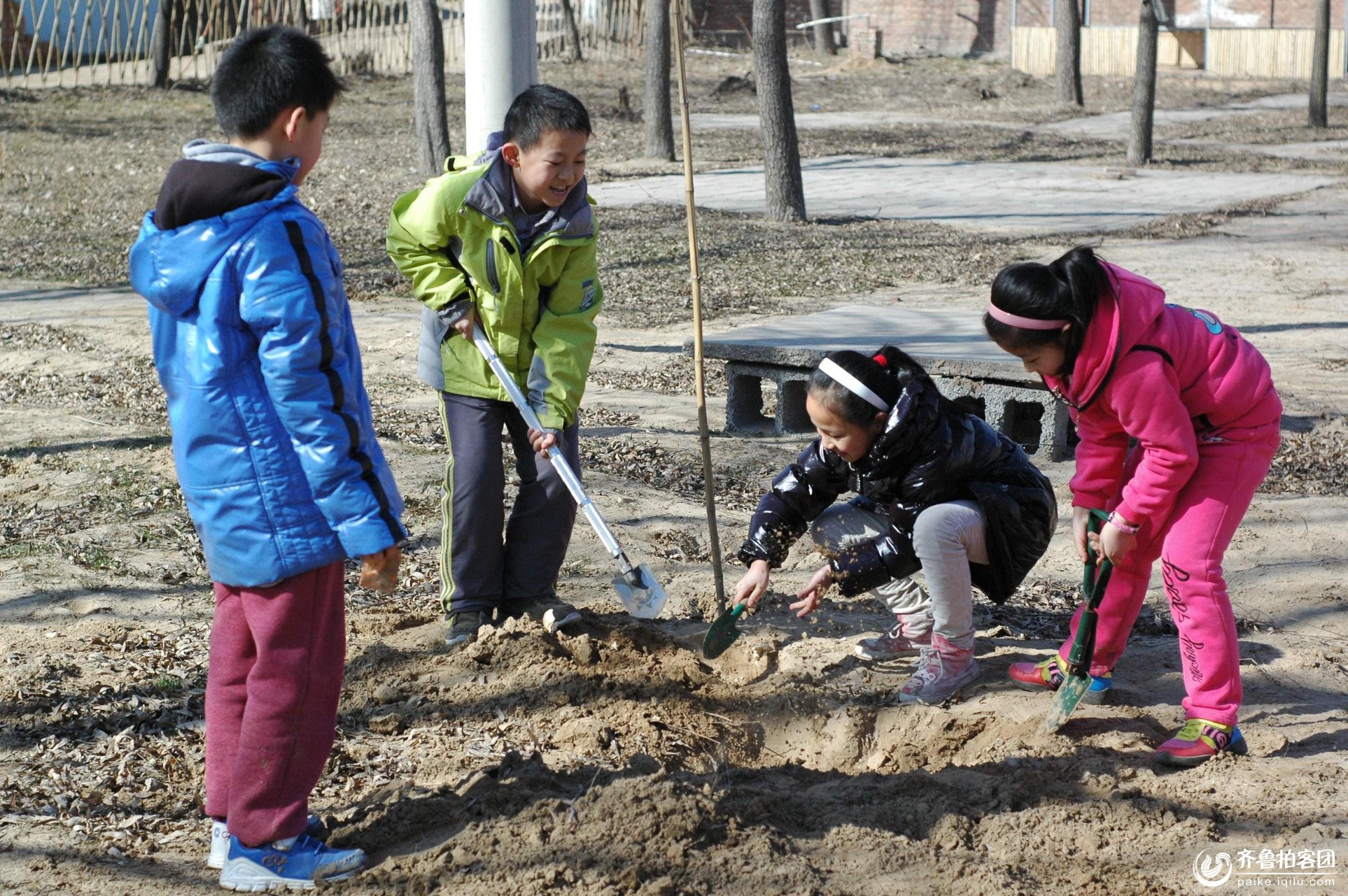 让我们一起植树吧! - 东营拍客 - 齐鲁社区 - 山东最