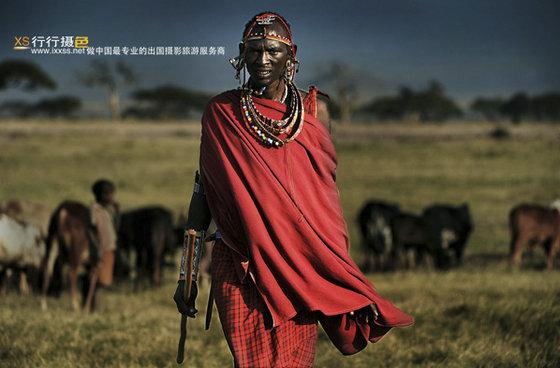8月肯尼亚动物大迁徙摄影旅游团招募中