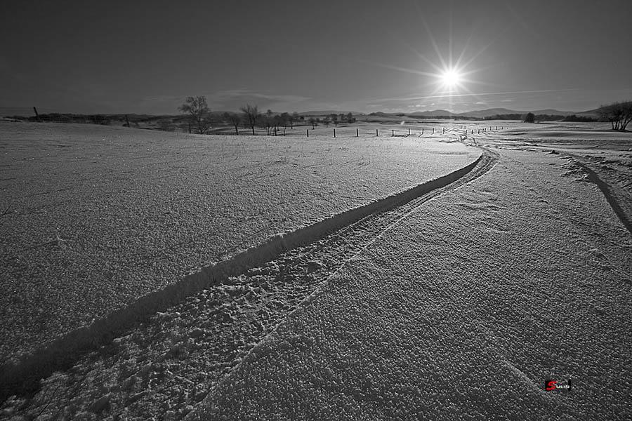 4 水墨雪原.jpg