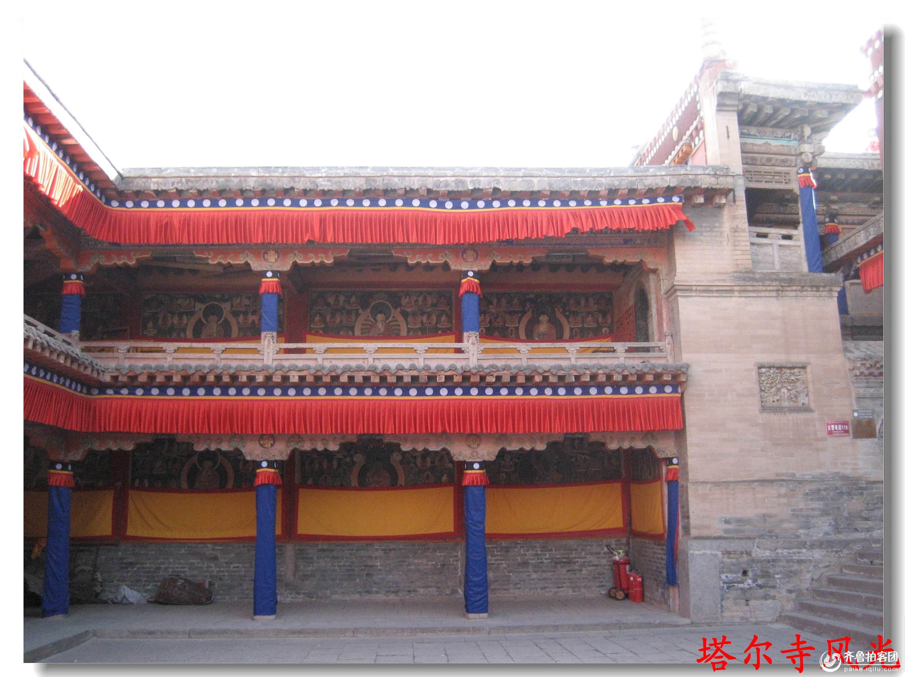 青海塔尔寺风光 - 青岛拍客