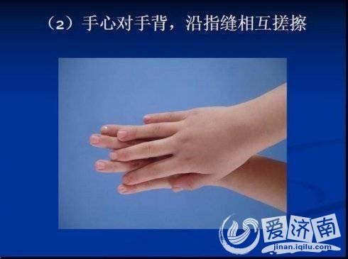 预防禽流感,教你正确洗手6步骤