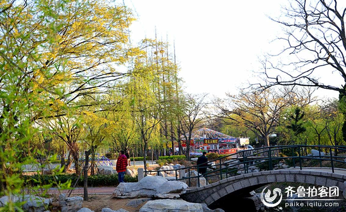青岛中山公园的春天
