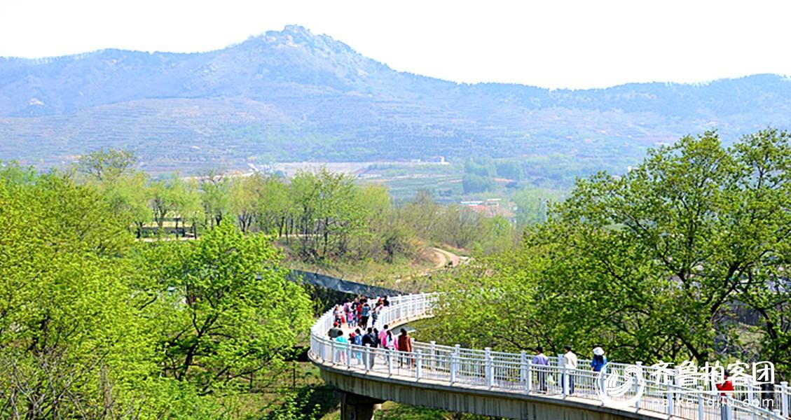69 青岛野生动物园风景  分享到:qq空间新浪微博腾讯微博人人网微信