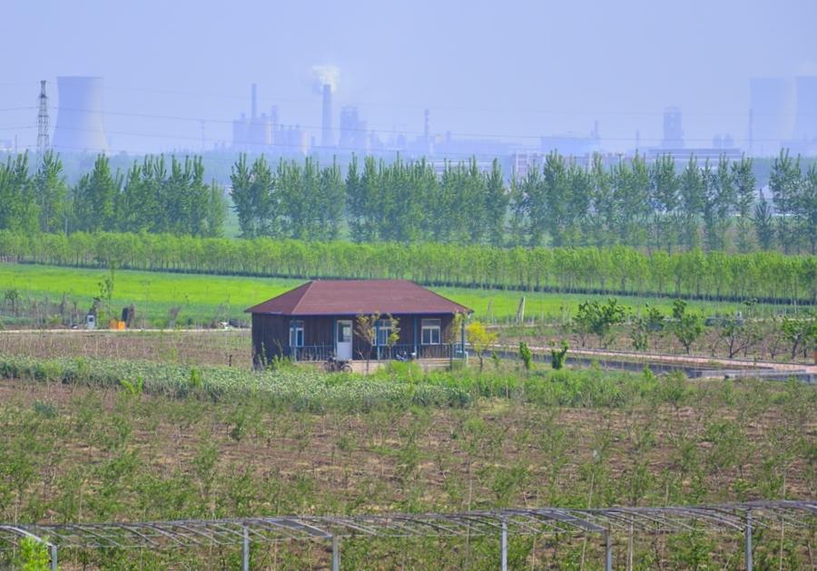 田野上的小木屋