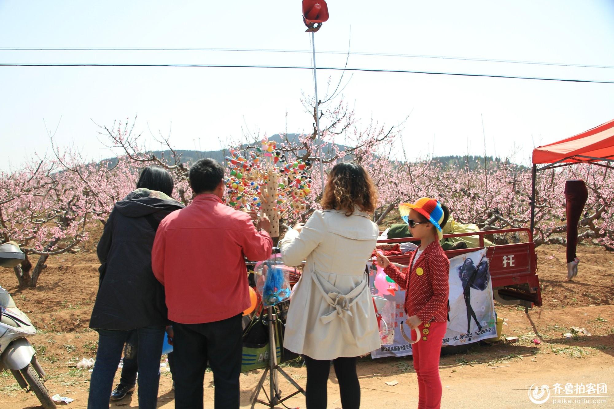 肥城刘台桃花源风景区------1