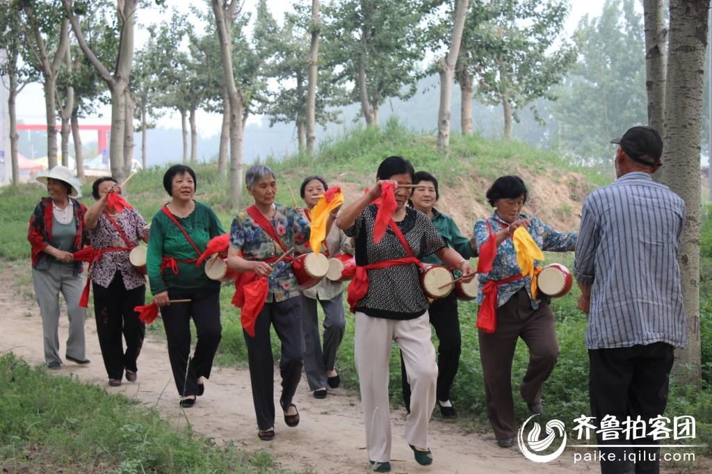 杨树林里的老年娱乐活动.