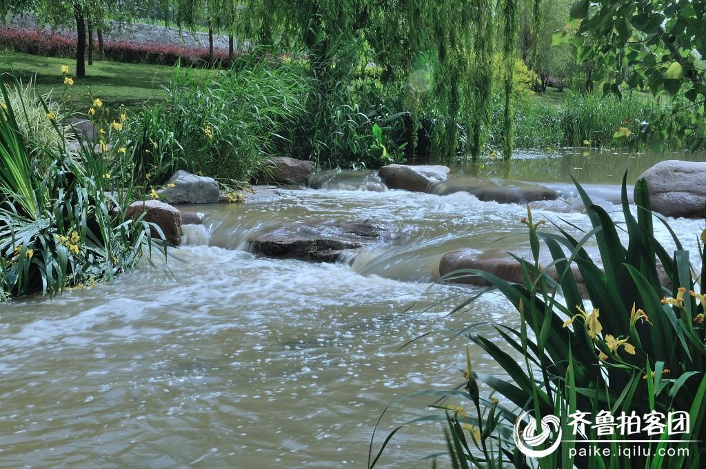 李村河 - 青岛拍客 - 齐鲁社区 - 山东最大的城市生活