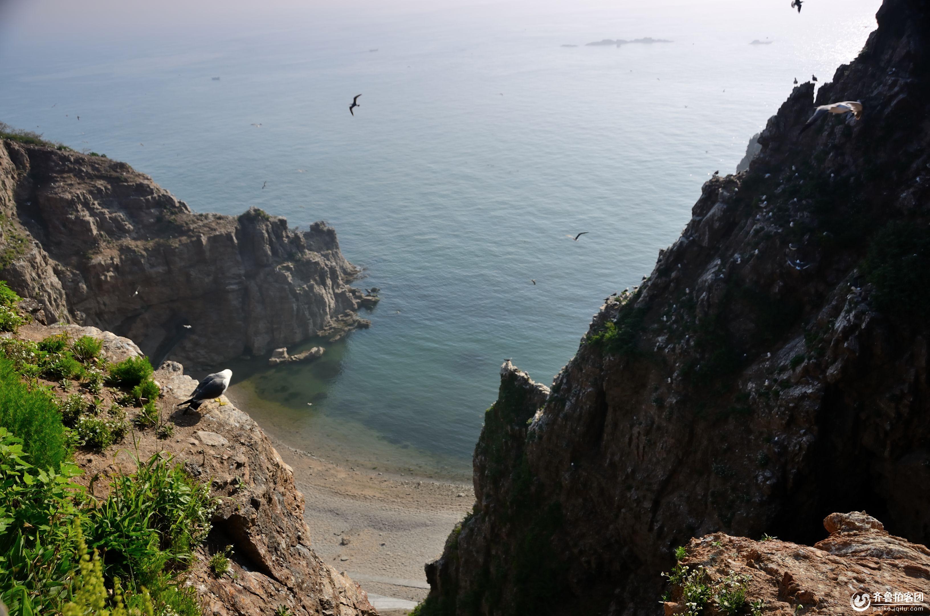 海驴岛的风景如画 - 青岛拍客