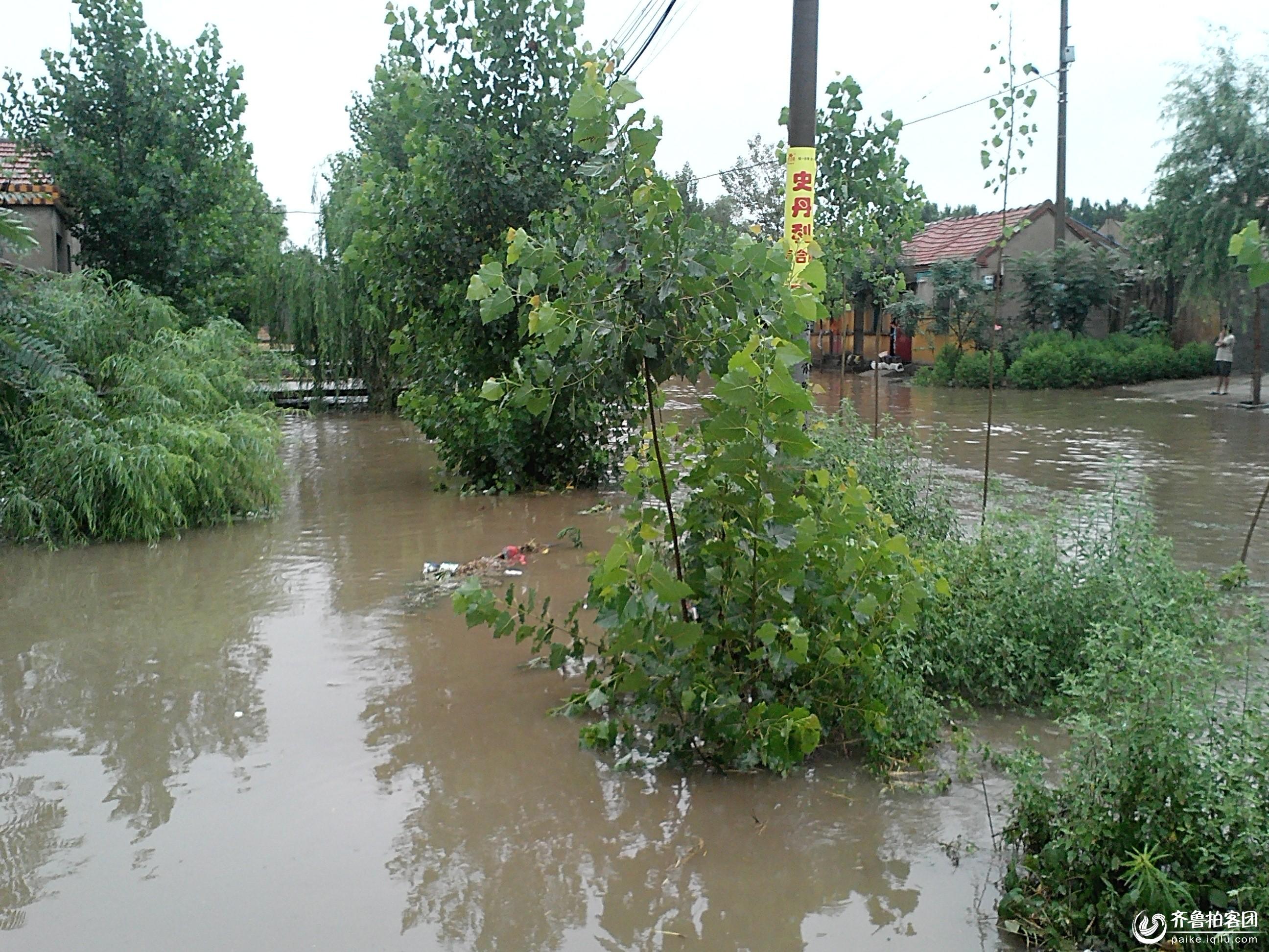 泗水突降暴雨,泉林镇受灾严重