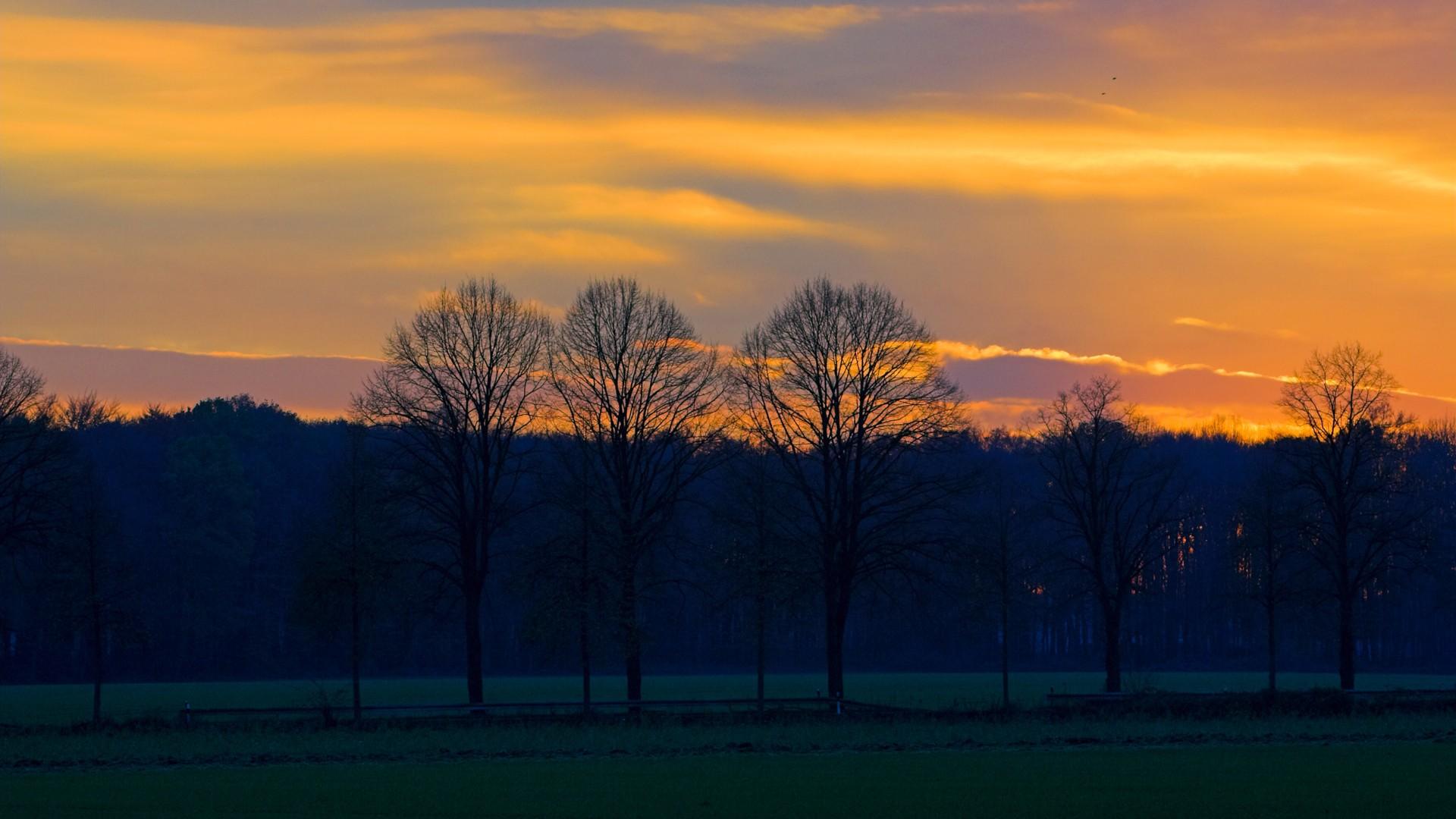 风景夕阳-壁纸桌面图片