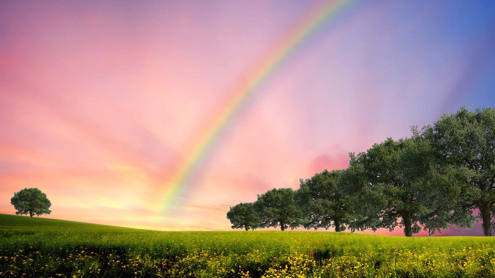 夏天的彩虹高清桌面壁纸