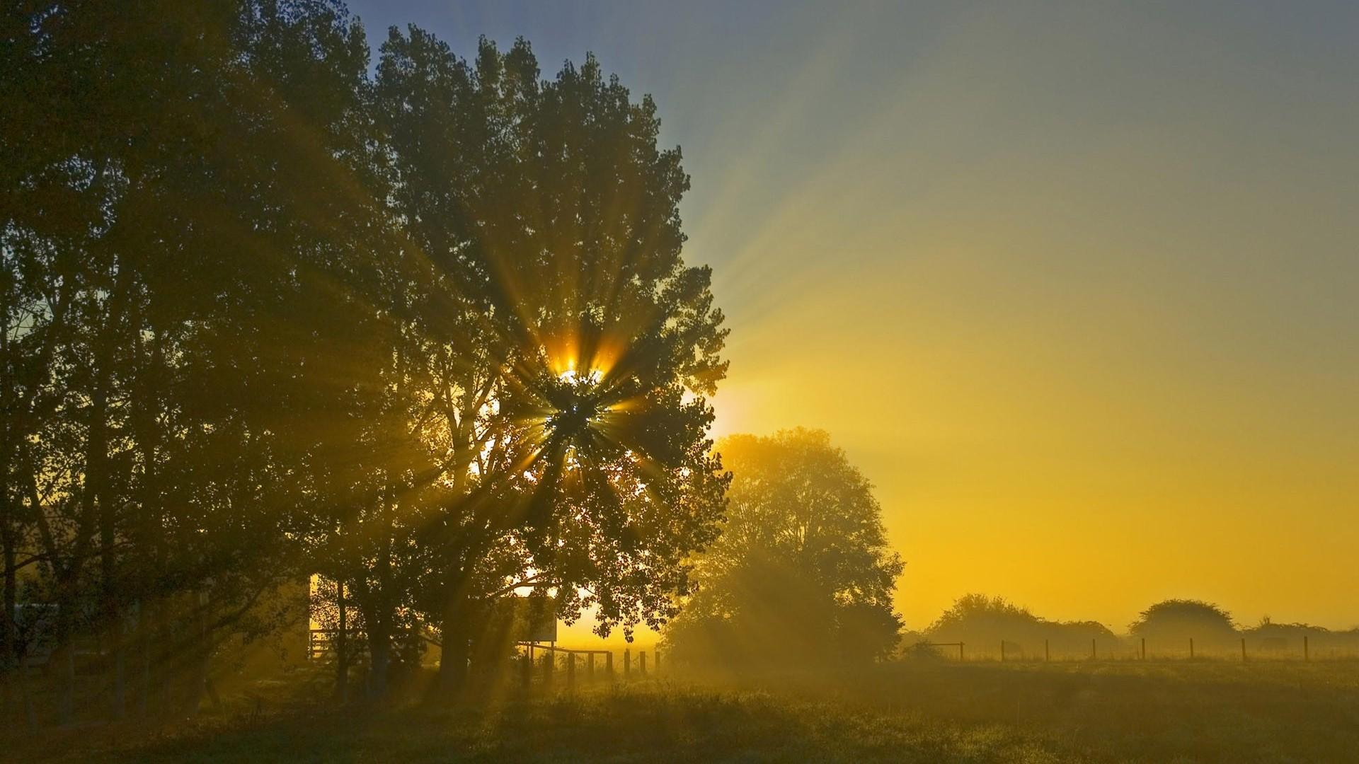高清风景日出照片-日出风景图,最美的风景照片高清,日出风景图片大全