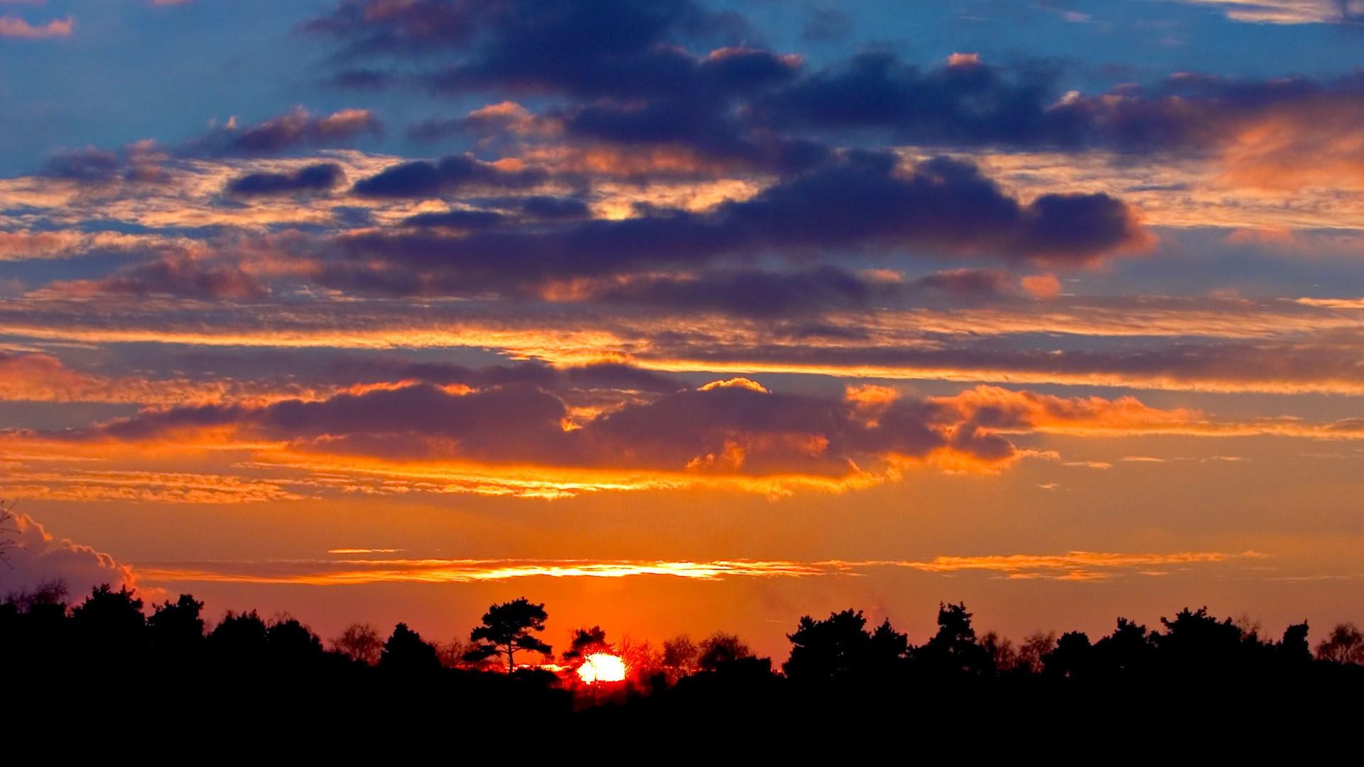 微信頭像海邊夕陽背影