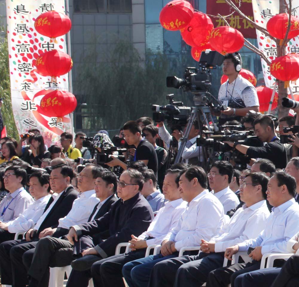 电视剧红高粱莫言导演演员参加红高粱艺图片
