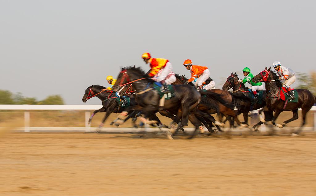 拍摄在历城区 济南国际赛马场