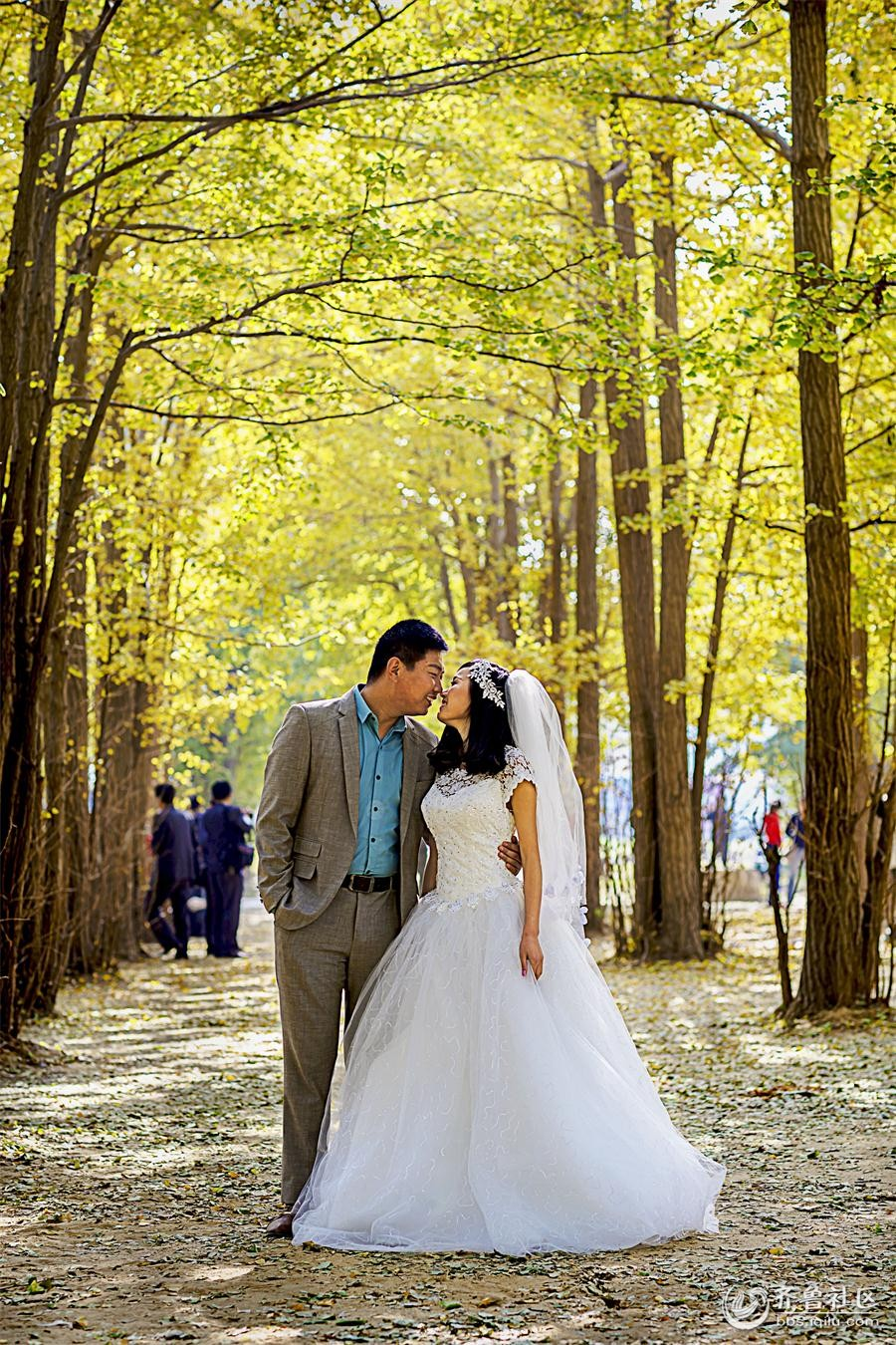 壁纸 风景 婚纱 婚纱照 森林 桌面 900_1350 竖版 竖屏 手机
