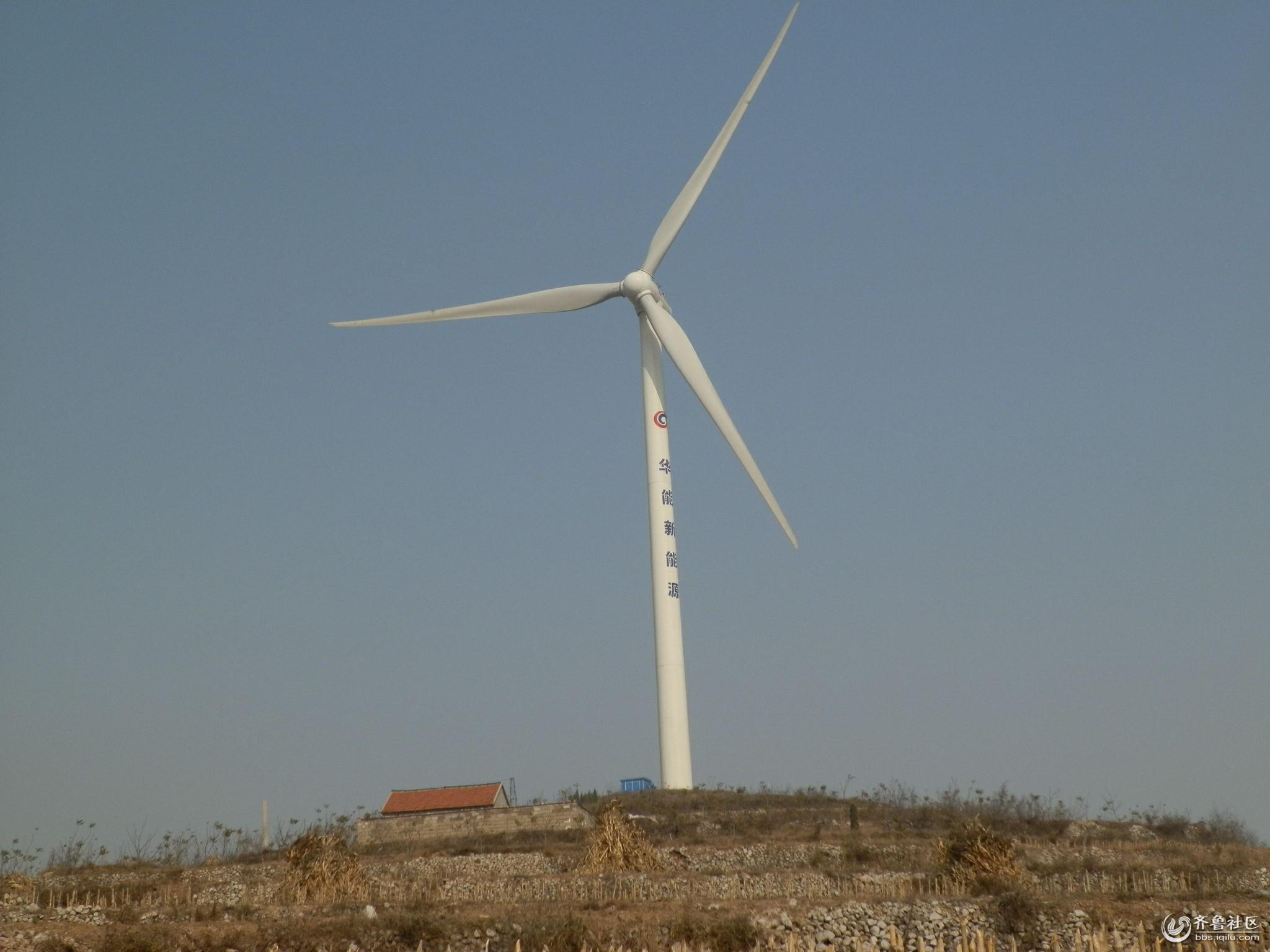 看看风力发电的大风车