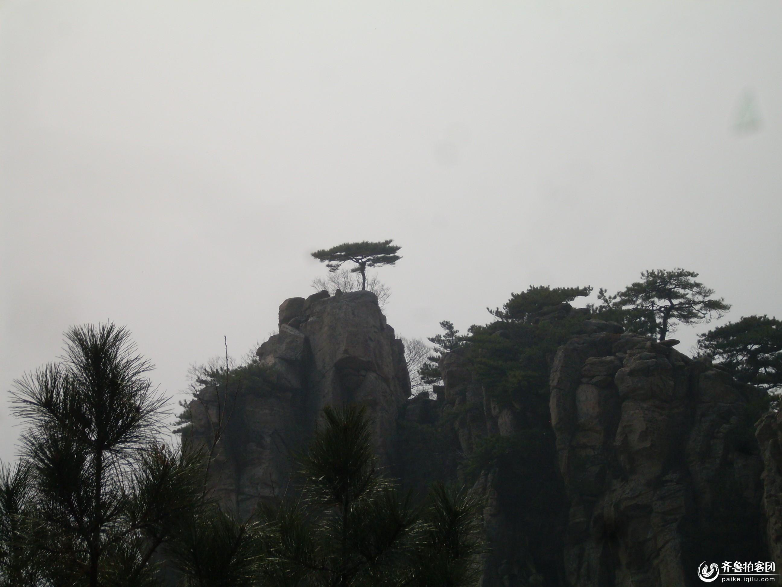 蒙山- 菏泽拍客 - 齐鲁社区 - 山东最大的城市生活,台图片