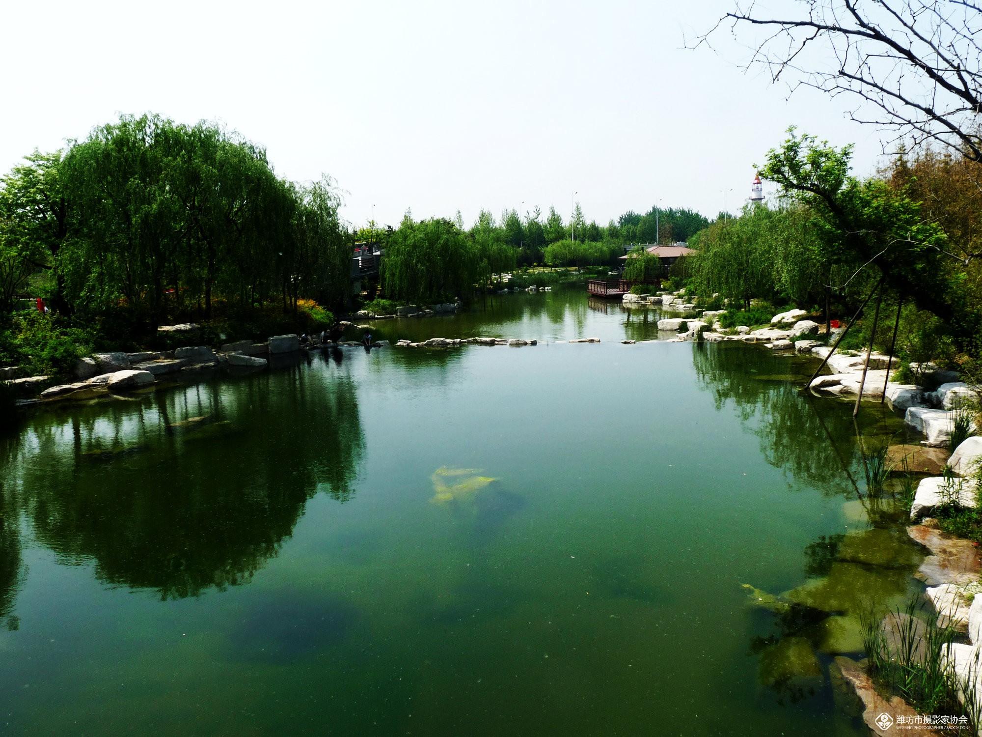 潍坊植物园一角