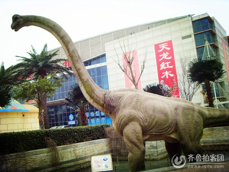 在张店这个有恐龙的地方,我还是第一次到达。老远就听到嗡嗡的叫声,到近前一看,啊!原来是几只大恐龙,大嘴还一张一张的,好吓人!